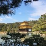 久しぶりの京都。